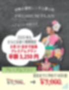 夢小町2019プラン最新.png