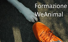 WeAnimal Accademy