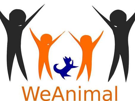"""Gli Interventi Assistiti con gli animali  non sono """"Attività sportive"""" ma """"Servizi alla persona"""""""