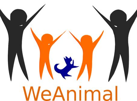 Perché WeAnimal non parteciperà al Workshop di Roma. Comunicato per gli associati e per chi vorrà le