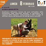 Stage 8 febbraio 2021 -Locandina 1.png