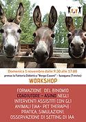 workshop_asino 1 nov_page-0001.jpg