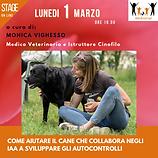 Locandina Stage On line 1° marzo 2021 -