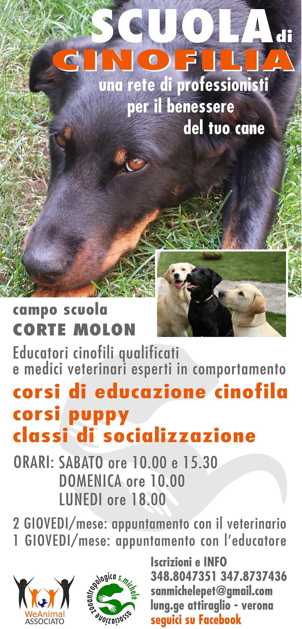 CMcorsi-2015.jpg