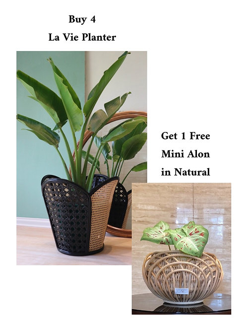 4 La Vie + Free Mini Alon