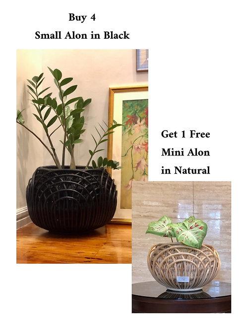 4 Small Black Alon + Free Mini Alon