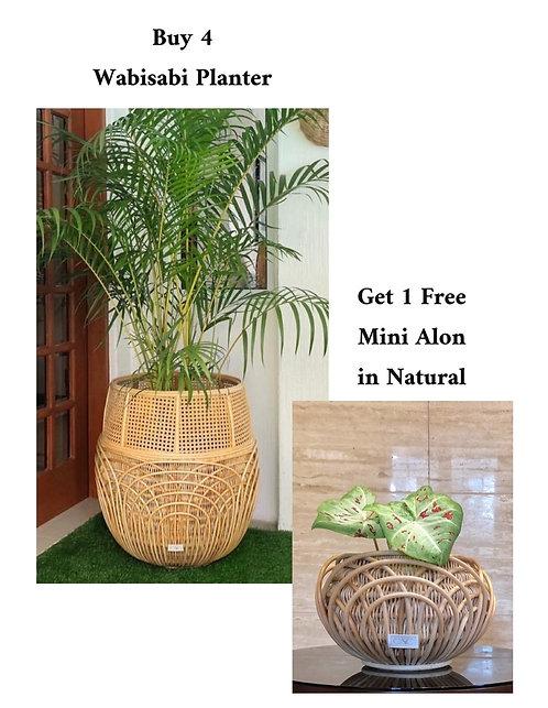 4 Wabisabi + Free Mini Alon