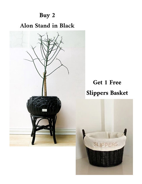 2 Alon Stand in Black + Free Slippers Basket