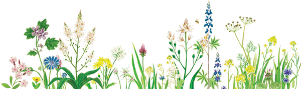 banner pics_flowers.png