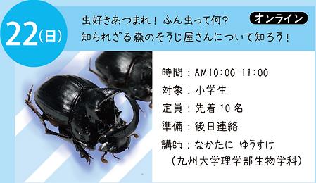 22-ふん虫.png