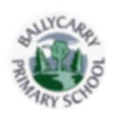 Ballycarry PS Web-01.jpg