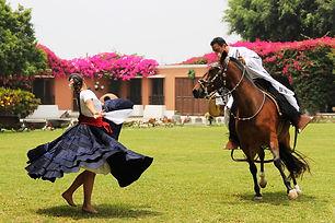 caballo-de-paso.jpg