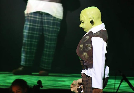 Young Shrek to be on the tele!