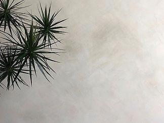 keypic-limewash.jpg