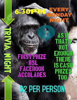 Copy of Trivia Night Quiz Competition Ev