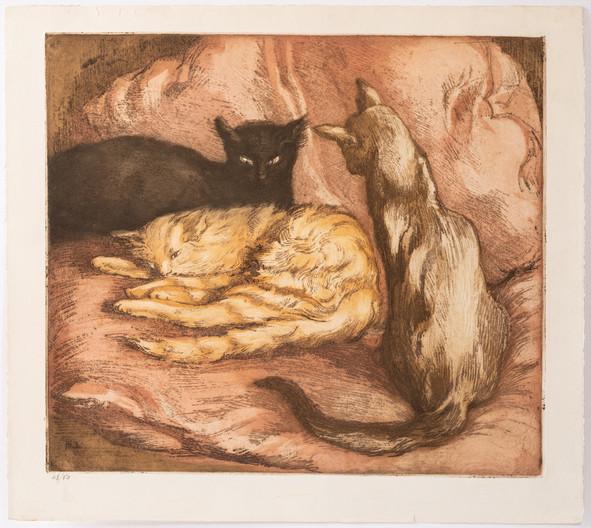Three cats.