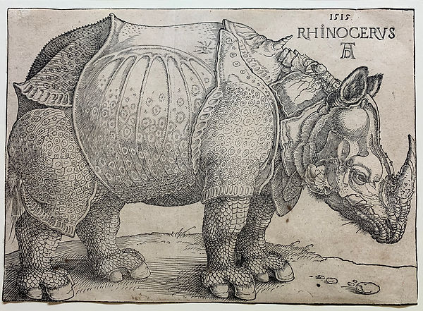 5_David_Tunick_Dürer,_Rhinoceros_-_Ken
