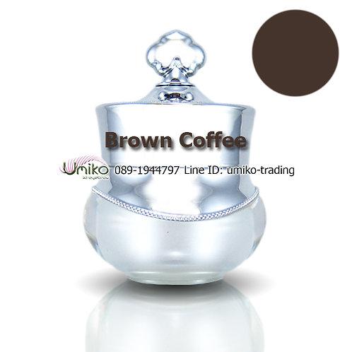 สีกระปุกเงิน สี Brown Coffee