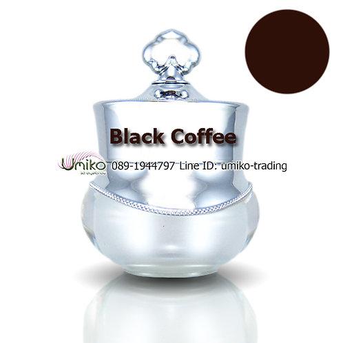 สีกระปุกเงิน สี Black Coffee