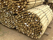 Bundle of Treated Pointed Posts