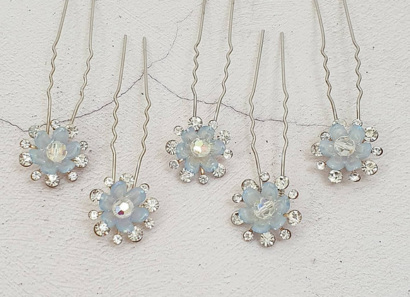 Blue star flowers (set of 3 or5)