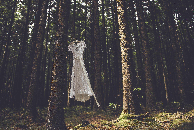 Into the wild dress
