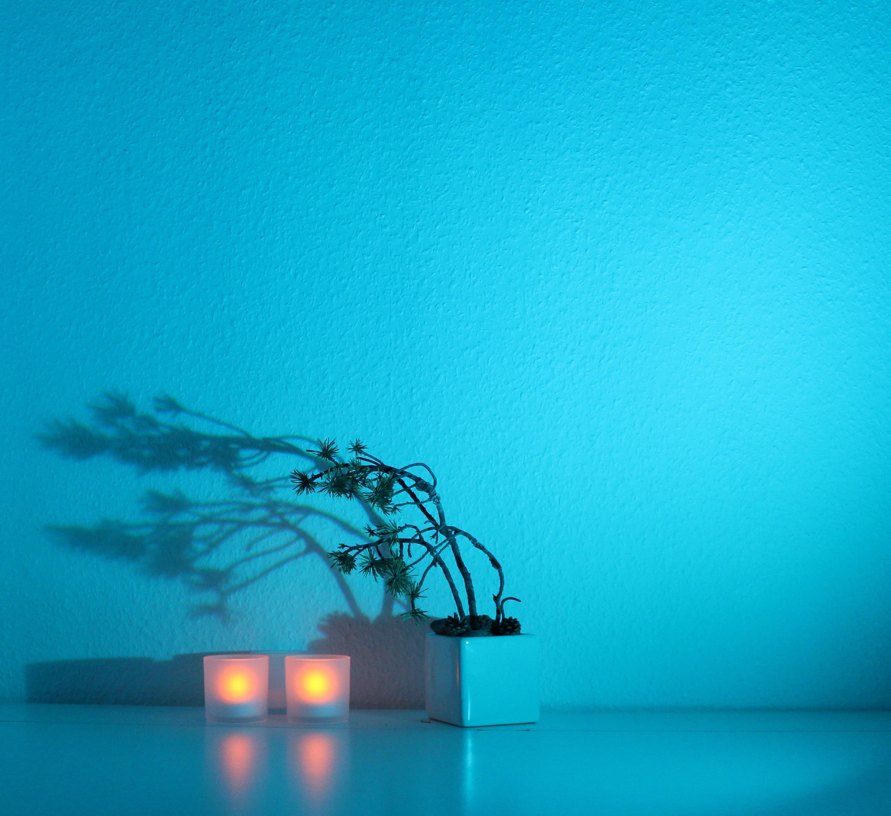 My light composition