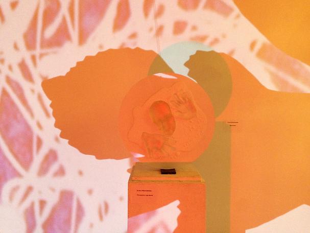 Марс. Выставка современного искусства. Москва. 2013