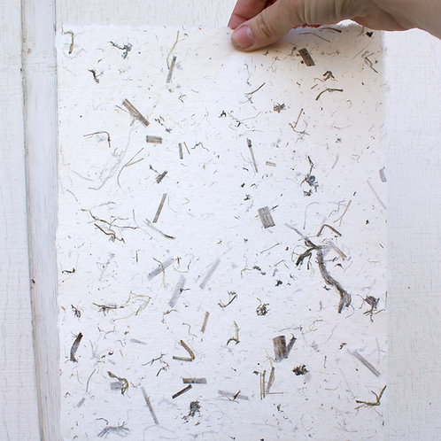 Handmade Paper: Cotton with Poppy Stalks
