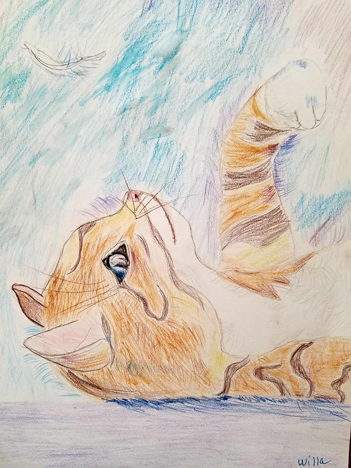 Kitty Drawing- Age 8