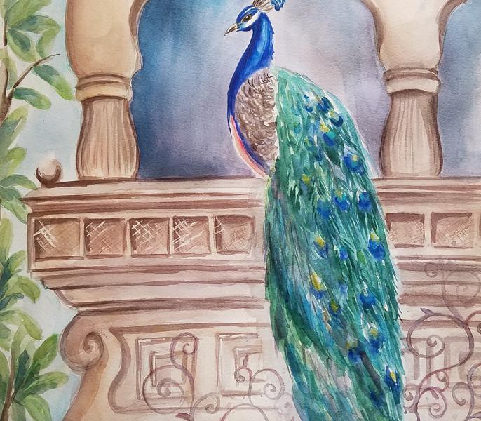 Peacock At The Balcony
