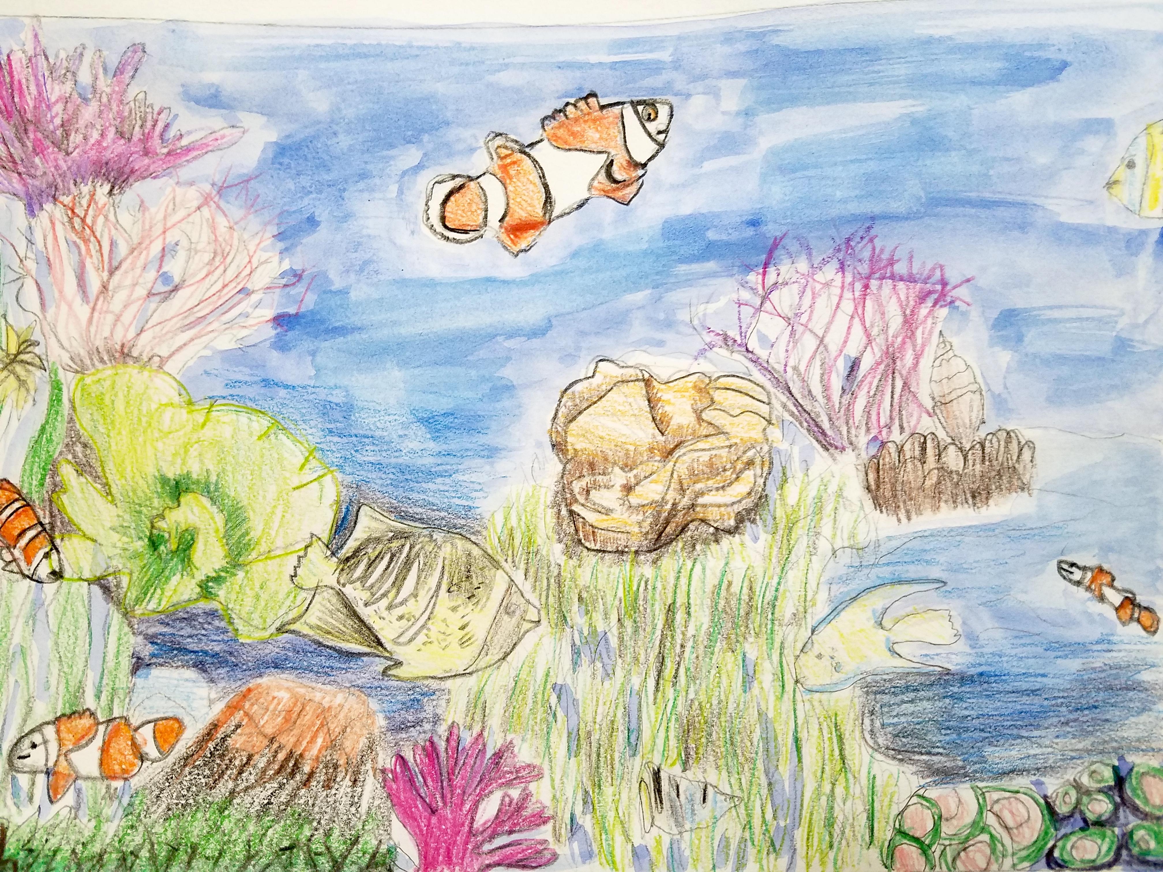 Seascape Drawing- Kid 9