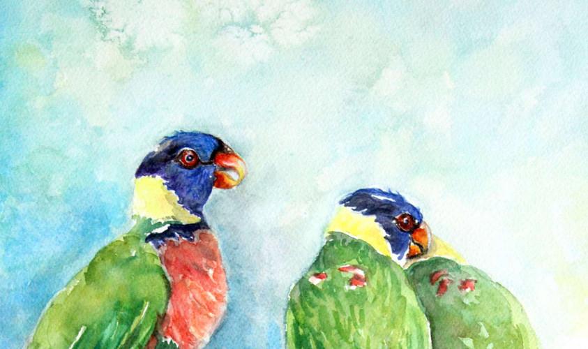 Vibrant Budgies Parakeet