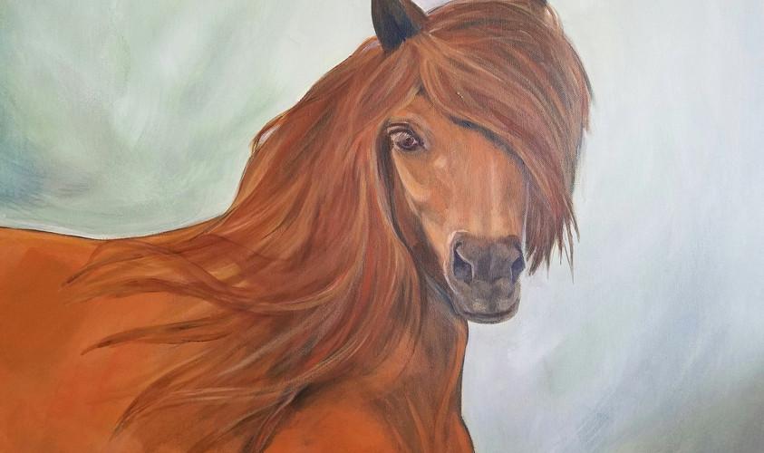 Looking Through- Horse Potrait