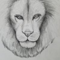 Lion Portrait -Age 10