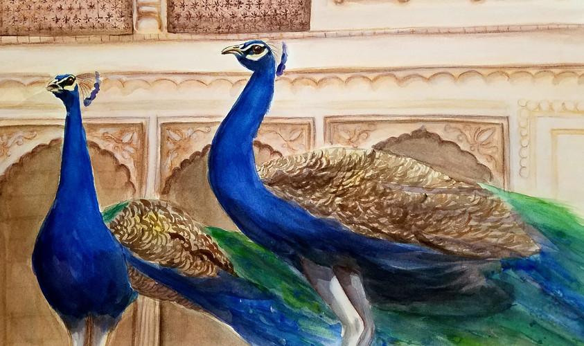 Peacocks in Mahal