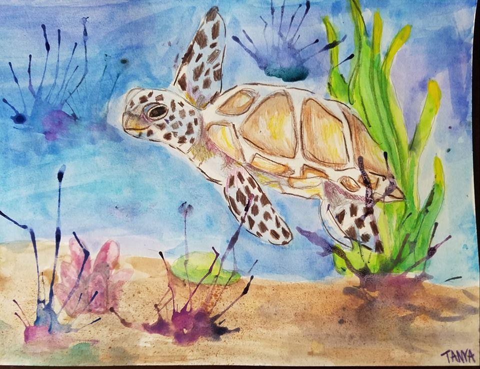 Turtle Art -Age 11