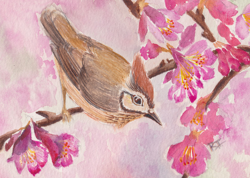 A Spring Song
