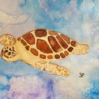 Turtle -Teen