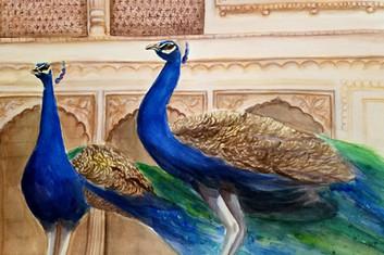 Peacocks in Mahal.jpg