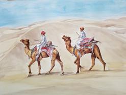 Camels & Desert-Rajasthan