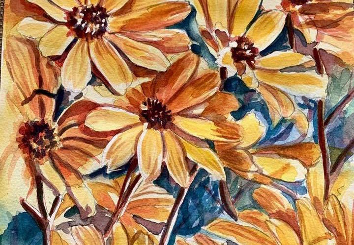 Sunny Wild Flowers