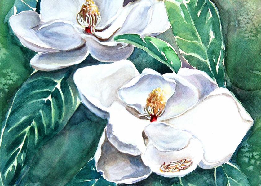 Mystic White Magnolias .jpg