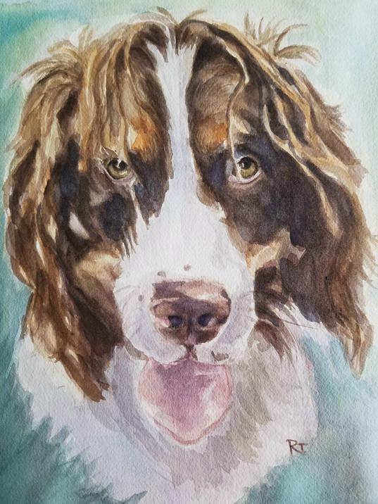 Pet Art Prints