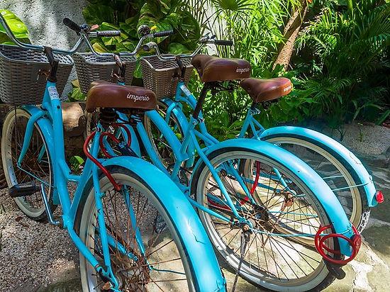 bikerentals-ahau.jpg