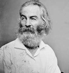 'More Or Less I Am'                               Walt Whitman's Bicentennial
