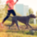 FitBark2_Dog_Woman_Running.png