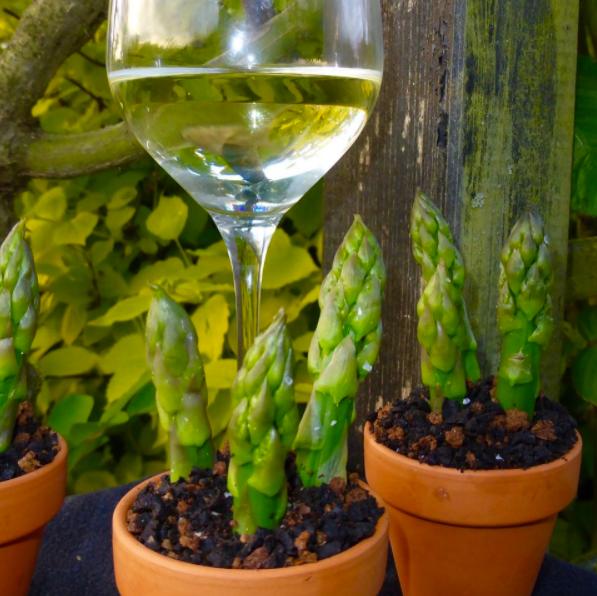 Planted Asparagus