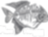 logo-banner fish house.png