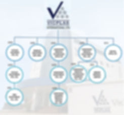 Vicplas_org_chart.JPG